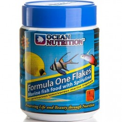 Ocean Nutrition Formula ONE Flakes 34gr