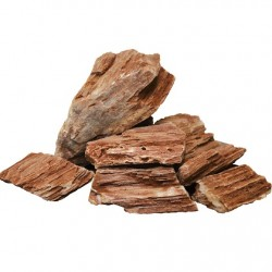 amtra φυσική πέτρα Stonewood-Fossil Rock (Ξυλόπετρα) το 1kg