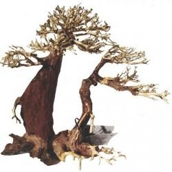 Haquoss φυσικό ξύλο Bosnai Driftwood 9 XXL 35x35cm