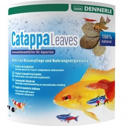 DENNERLE Catappa Leaves 8pc.