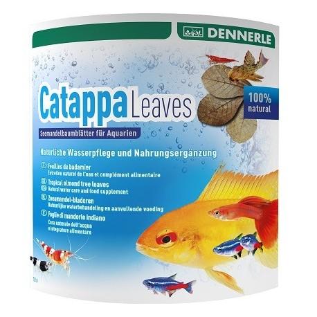DENNERLE Catappa Leaves 8pc.