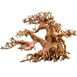 Strideways φυσικό χειροποίτητο ξύλο Bonsai M