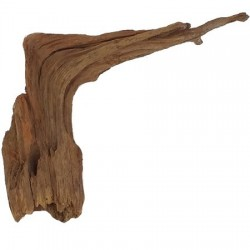 HARDSCAPE Φυσικό ξύλο ENTWOOD EW13 20x31cm