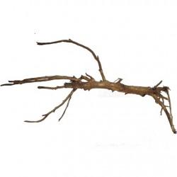 amtra φυσικό ξύλο Moorwood MWMD 405