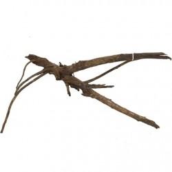 amtra φυσικό ξύλο Moorwood MWMD 404