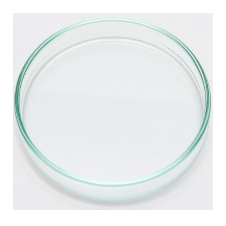 Green Aqua δίσκος σίτισης γαρίδων