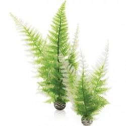 biOrb Aquatic winter fern set 2