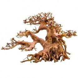 Strideways φυσικό χειροποίτητο ξύλο Bonsai L