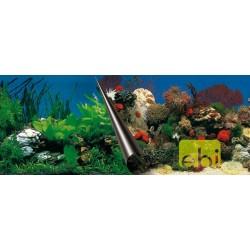 Europet Πόστερ πλάτης Stone+Coral 50x120cm