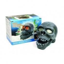 Arcadia διακοσμητικό ενυδρείου Skull