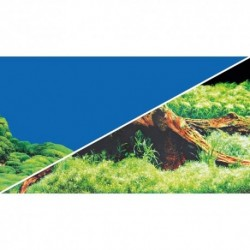 Hobby πόστερ 30 x 60cm διπλής όψης Spring/Moss