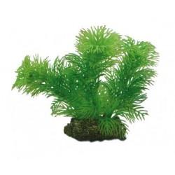 Hobby Διακοσμητικό φυτό Egeria Densa 13cm