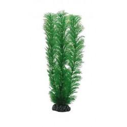 Hobby Διακοσμητικό φυτό Egeria Densa 20cm