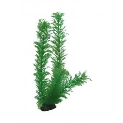 Hobby Διακοσμητικό φυτό Egeria Densa 34cm