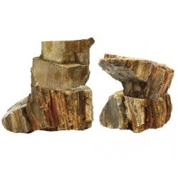 Amtra φυσική πέτρα Petrified το 1kg