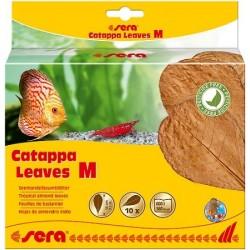 sera Catappa Leaves M (10 φύλλα/18cm)